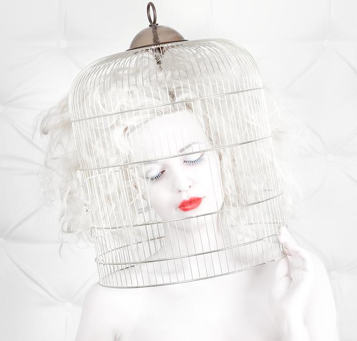 birdcage love
